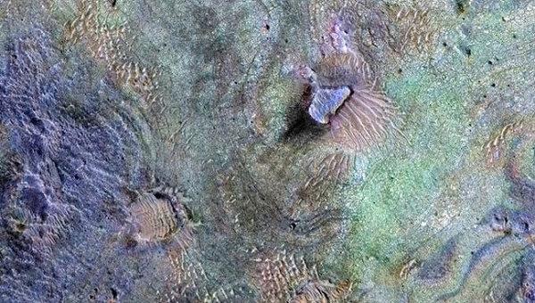 Ученые приблизились к раскрытию тайны исчезновения атмосферы Марса